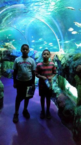 North Carolina Aquarium family vacation