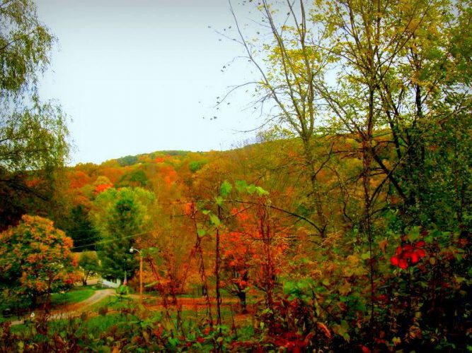 fall in Bluefield