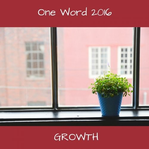 one word 2016 Growth