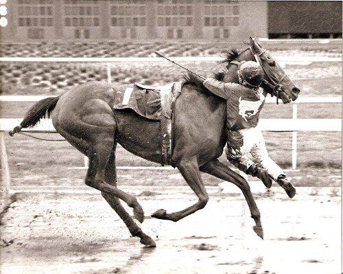 Jockey Nate Hubbard