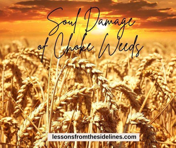 soul damage of choke weeds