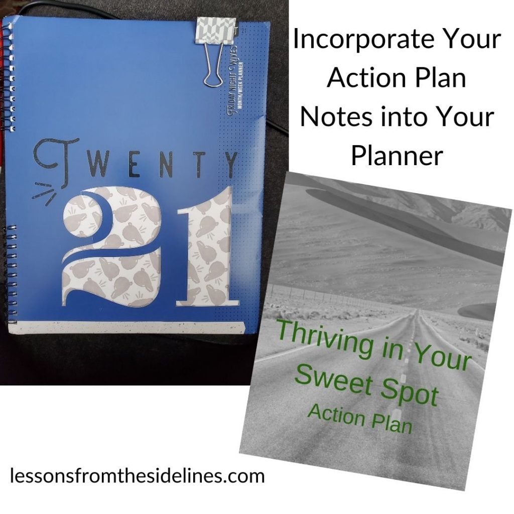 Action plan worksheets and planner